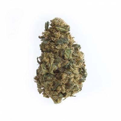 Fleurs de CBD : STRAWBERRY KUSH
